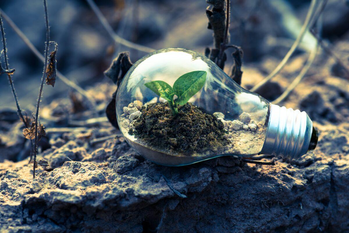 2027: Empresa neutra en emissions de CO2