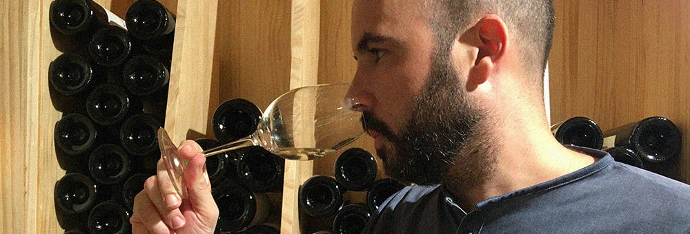 Necessites ajuda per escollir el vi adequat? Deixa't assessorar pel nostre sommelier!