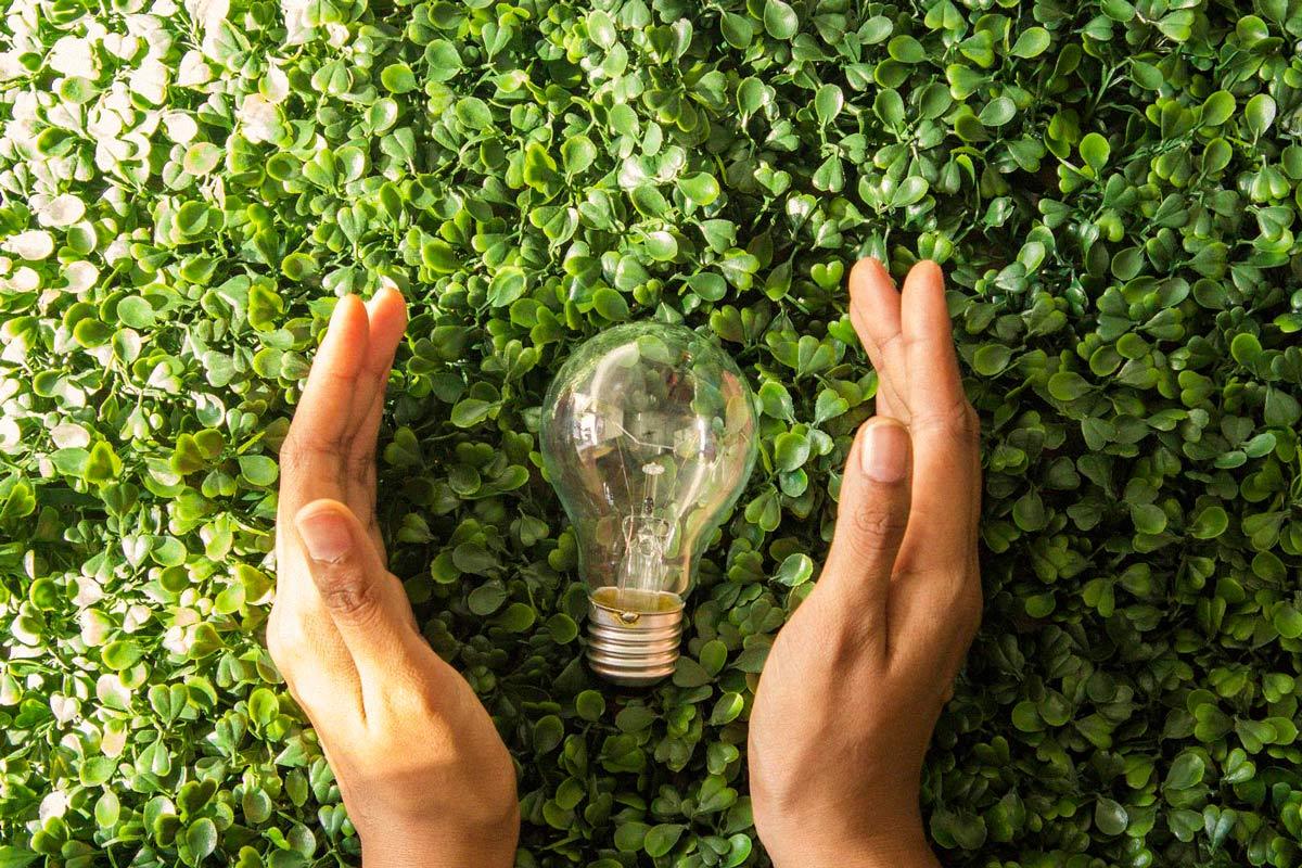 Dia Mundial de l'Eficiència Energètica: apostem per l'energia verda