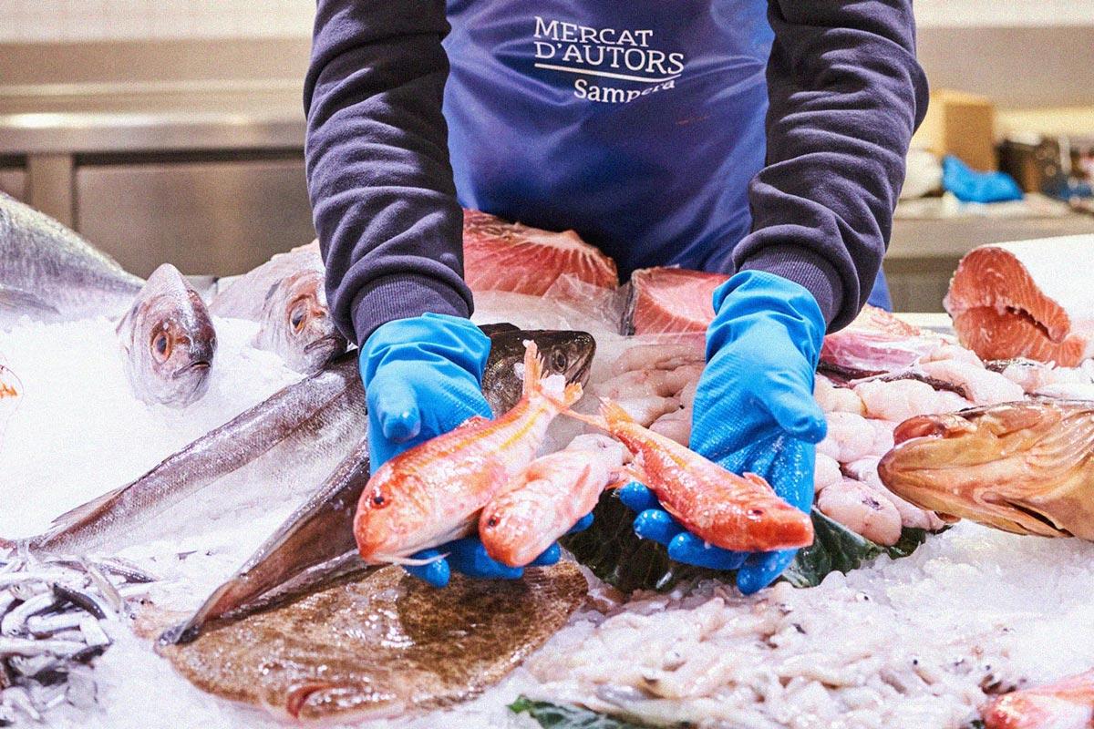 Et portem el millor peix i marisc de la mà de Sampera!
