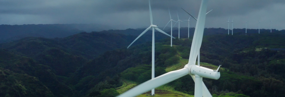 Dia Mundial del Medi Ambient: fem camí cap a la neutralitat d'emissions l'any 2027