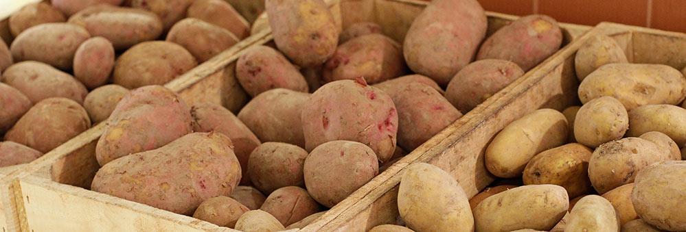 Una patata per a cada ocasió